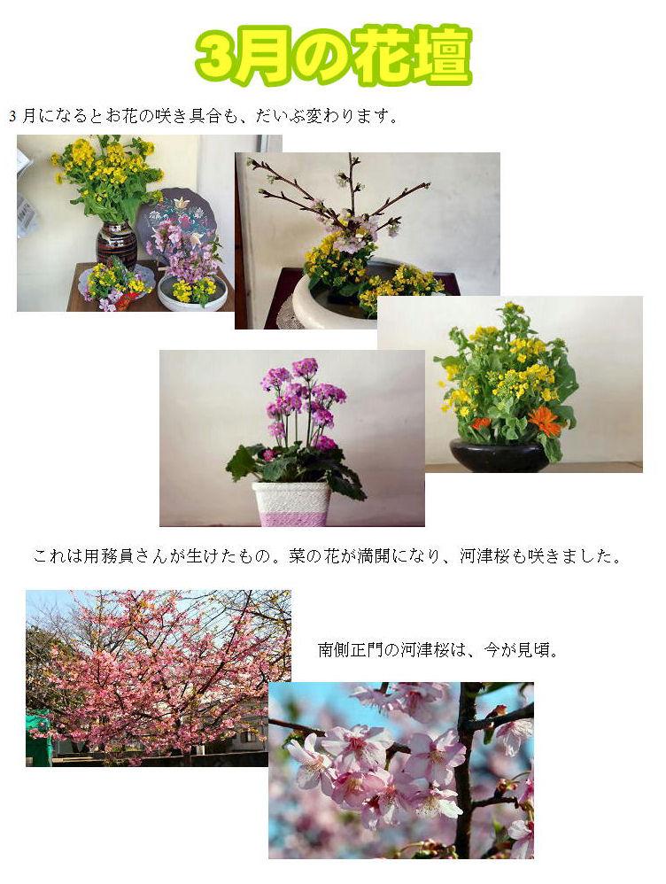 3月の花壇