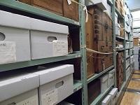 写真:収蔵庫の様子