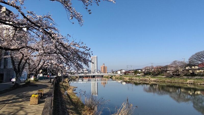 3月24日古利根川・春日橋と古利根公園橋方面