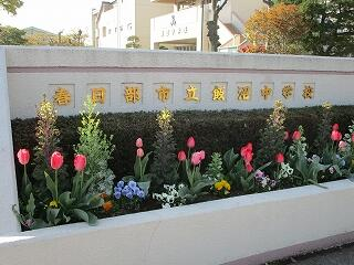正門前の花壇にはチューリップが咲き誇ります