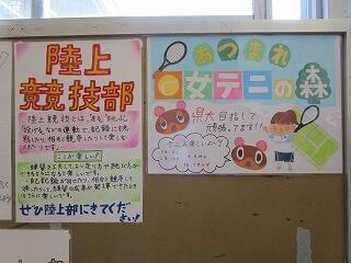 昇降口前の掲示板 各部の勧誘ポスターです