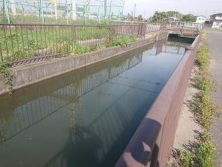 連休で田植えをするのでしょう 用水路は水がいっぱい