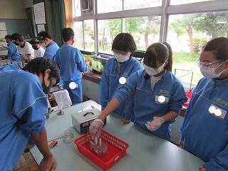 2年1組 理科 水の電気分解 いよいよ各班で実験です