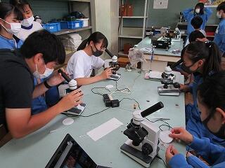 2年1組 理科 植物の細胞を調べる