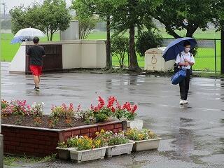 今日は朝から雨でした