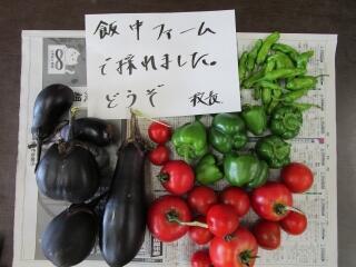 5、6組で行っている飯中ファーム 今年もたくさん収穫できました
