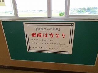 2学年 廊下の掲示物