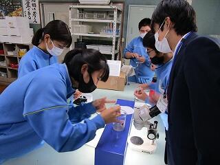 1年1組 理科 火山灰を水で洗い不純物を取り除き、顕微鏡で観察しました