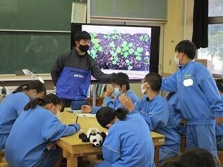 1年1組 技術 小松菜の栽培