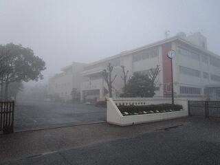 今日は朝から濃い霧に覆われました