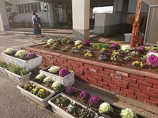 ロータリーの花壇は教頭先生と5、6組の生徒達が毎年素敵な花を植えてくれます