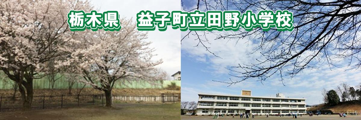 栃木県益子町立田野小学校